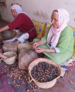 arganeraie, production argan